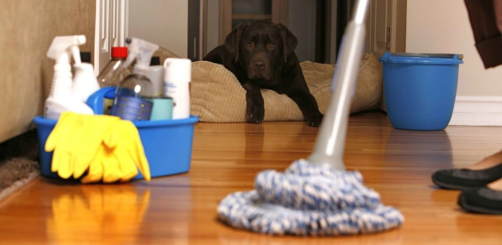 Good Habits That Minimize House Cleaning